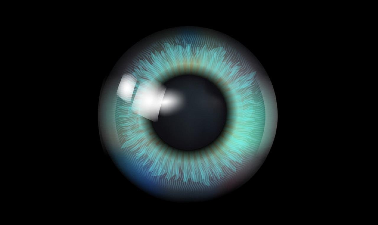 Photo of Google, Retina Taraması ile Kalp Krizi Riskinizi Öngörebilir!