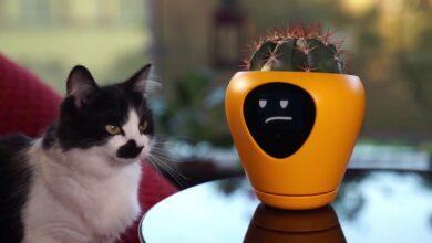 Photo of Bitkilerinizi Konuşturan Akıllı Saksı Geliştirildi!