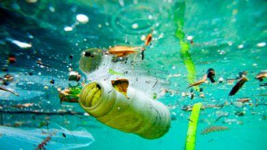 Photo of Çevre Kirliliği için Su Altı Çim Biçme Makinesi Kullanılacak!