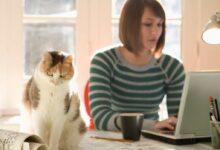 Photo of Çalışma Alanınız için 5 İlginç Teknolojik Cihaz!
