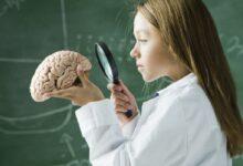 Photo of İnsan Beyni Hakkında 20 Şaşırtıcı Gerçek!